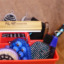 Horse Grooming Tools and Equipment