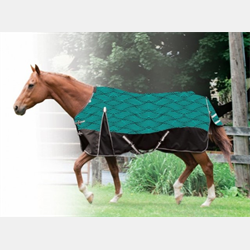 Cavalier Century Ultra 1200 D Winter Turnout Blanket Teal