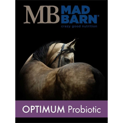 SUPP/MAD BARN/OPTIMUM PROBIOTIC 0.5KG JAR