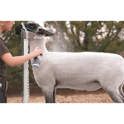 LVSTK/GROOM/WV/69-2702/SHEEP & GOAT CONDITIONING SPRAY       2015