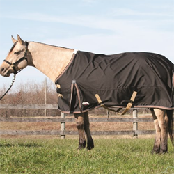 Horse Blankets and Turn Out Sheets