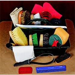 Horse Grooming Supplies and Equipment